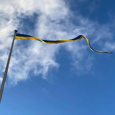 Svensk sverige vimpel 1