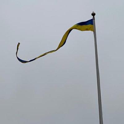 Svensk sverige vimpel 3